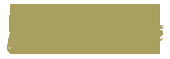 logo-blessed-life
